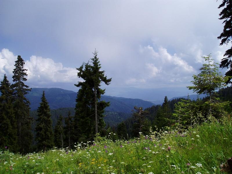 Georgia, Borjomi-Kharagauli National Park