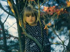 lauren tree 2