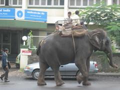 Best Mode of Transport in Mumbai