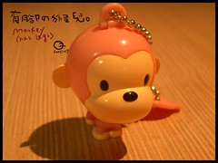 2005-07-31 monkey