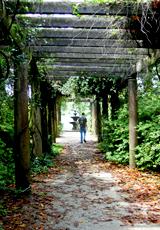 walking through a garden tunnel