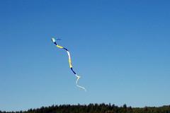 Long Kite