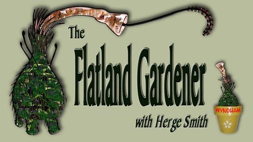 The Flatland Gardener