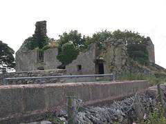 Gwenynog, Llanfflewin