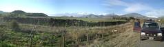 Road Trip Santiago - 39 - Chile pano
