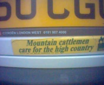 MountainCattlemen