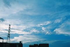 海棠颱風過境後