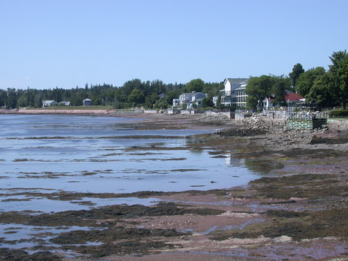 standrews newbrunswick vacation passamaquoddybay lowtide seashore