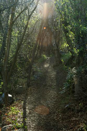 sunrise canon rebel utah trail ogden wasatchmountains xti
