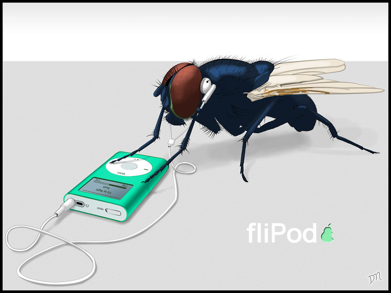 fliPod