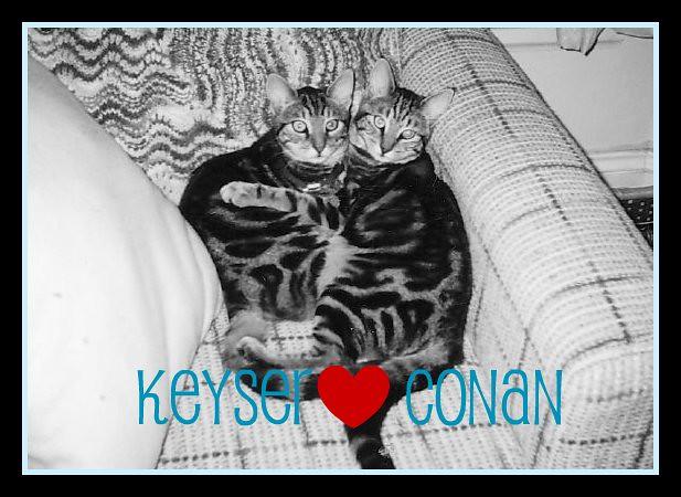 Keyser Heart Conan