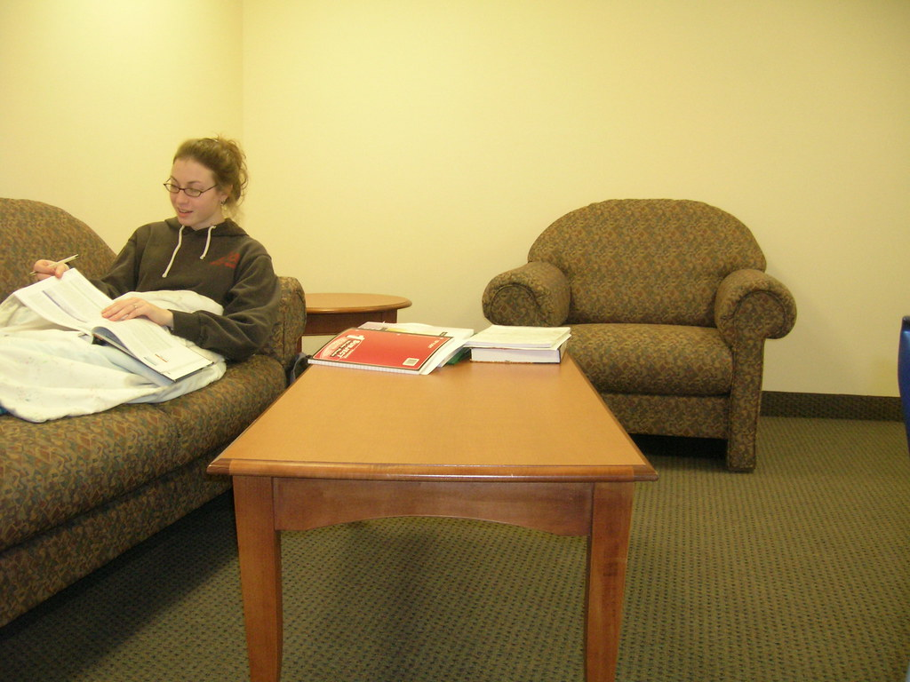 Study Time | Studying in the lounge. | Brian Turner | Flickr