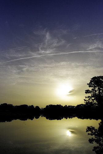 morning light sun reflection tree water lines sunrise serene