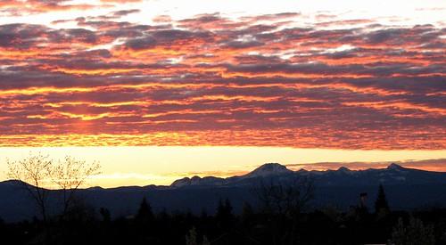 california mountains redding coshow
