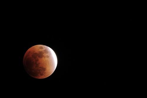 Lunar Eclipse 2 by Paul D'Andrea