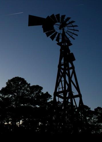 park sunset sky canon lens star texas houston shooting kit alexander silhoette xti 400d duessen