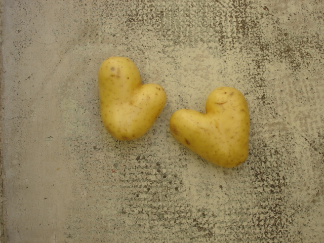My Heart  belongs to my Potatoes :--)