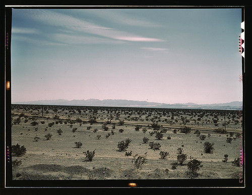 Mojave Desert country, crossed by Santa Fe R.R., Cadiz, Calif.  (LOC) | by The Library of Congress