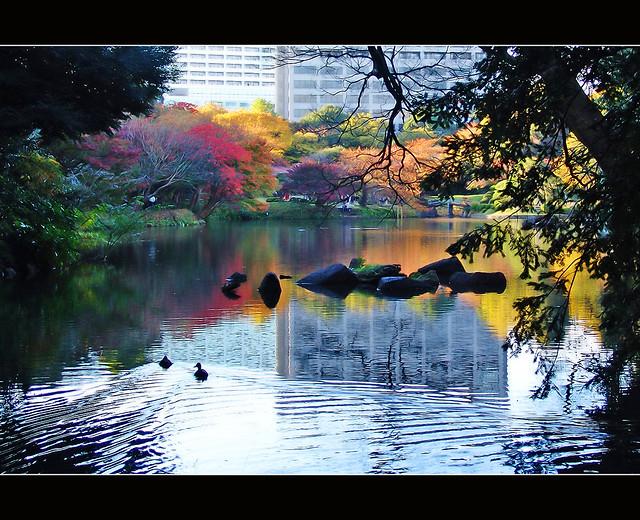 Tokyo Korakuen Garden