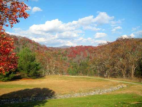 trip trees fall colors grass leaves clouds bluesky east eastward sightsee newyorkorbust