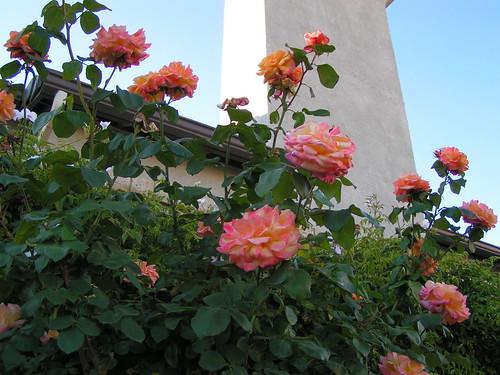 garden decor   by kidtrip