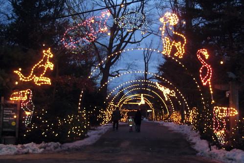 NYC - Bronx - Bronx Zoo - 2007 Holiday Lights | by wallyg
