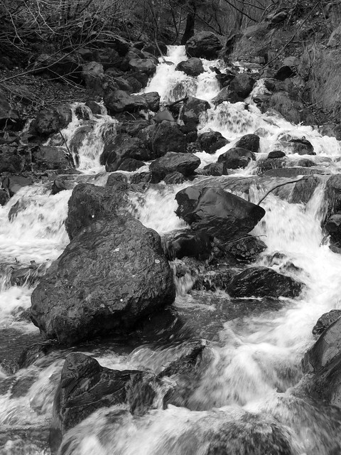 Falls Creek in B&W