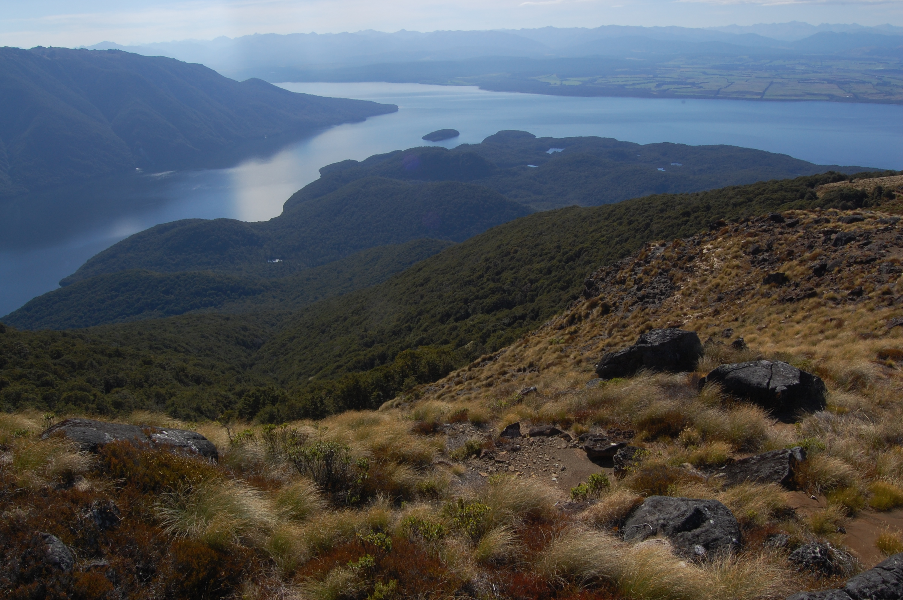 Lake Te Anau a v lese Hidden lakes
