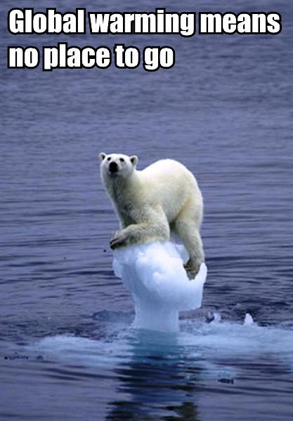 LOLbear-global-warming-nogo