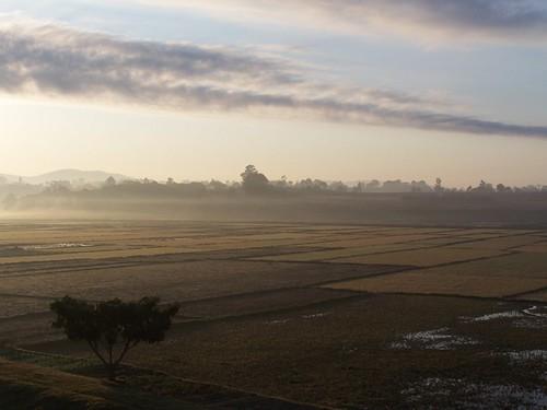 morning sky sun mist fog sunrise madagascar weehours malaza lazaina fogoverricefieldsplains