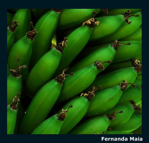 Bananas verdes
