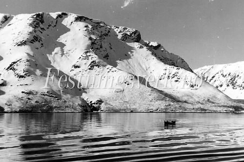 Finnmark 1940-1945 (411)