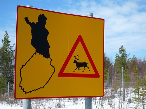Beware of the Reindeer | by timo_w2s