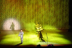 Ak Gulder Performance-98