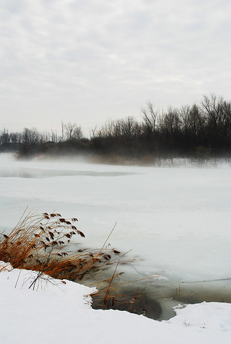 winter lake snow cold ice water fog nikon sad montréal montreal québec parc dollarddesormeaux thecontinuum d80 mywinners superbmasterpiece betterthangood scenicsnotjustlandscapes