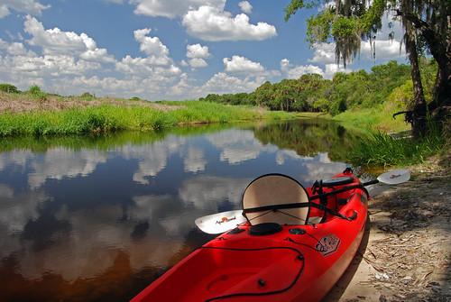 reflexions naturesfinest blueribbonwinner myakkariverstatepark michaelskelton michaeldskelton michaeldskeltonphotography