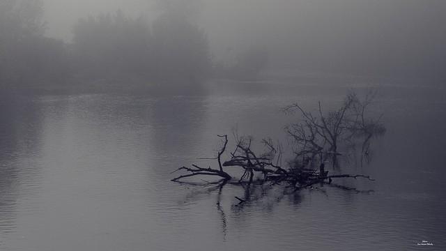 Le long du fleuve,  Tu sais elle partira.