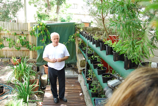 mobbs' herbs and veggies