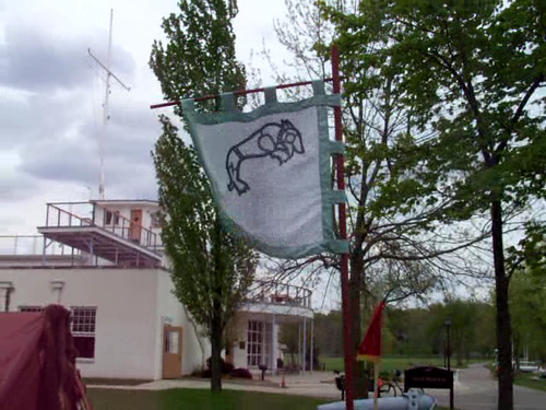 Raven Banner in the Wind 2