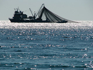 silhouetted trawler | by adstream