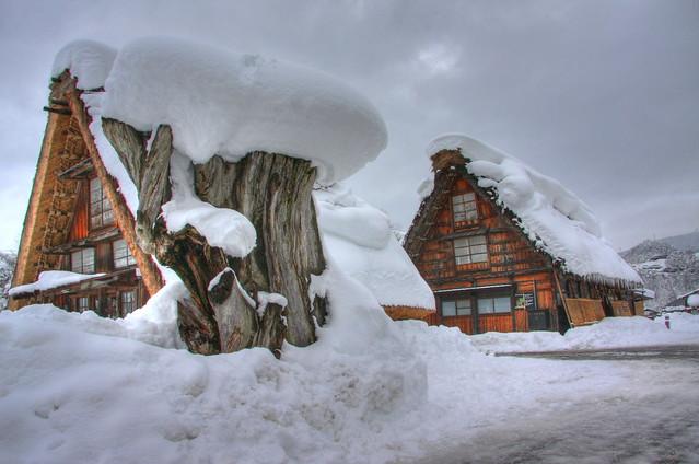 Wood snow and Gassho homes in Shirakawago Japan