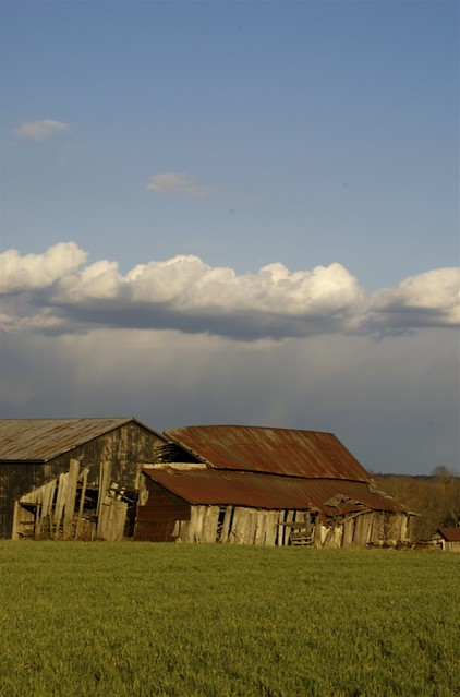 Zach Stone Is Gonna Be Famous Season 1 2013: Barns And Clouds
