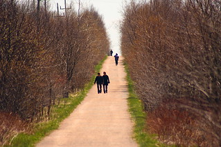 Confederation Trail at Lunch | by Martin Cathrae