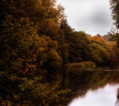 Autumn on the Frome