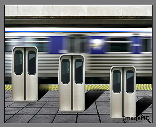 Transit Doors