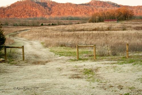 winter barn rural landscape bellsbendnashville