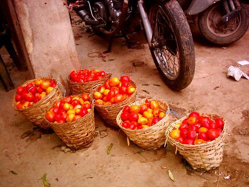 Misconduct rotten tomatoes