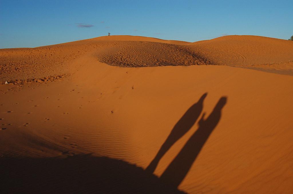 Resultado de imagen de Y entre la sombra y el desierto