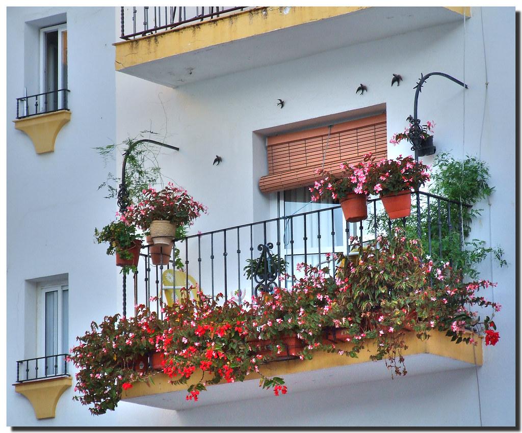 Balcony with swallows / Balcón con golondrinas by SantiMB.Photos