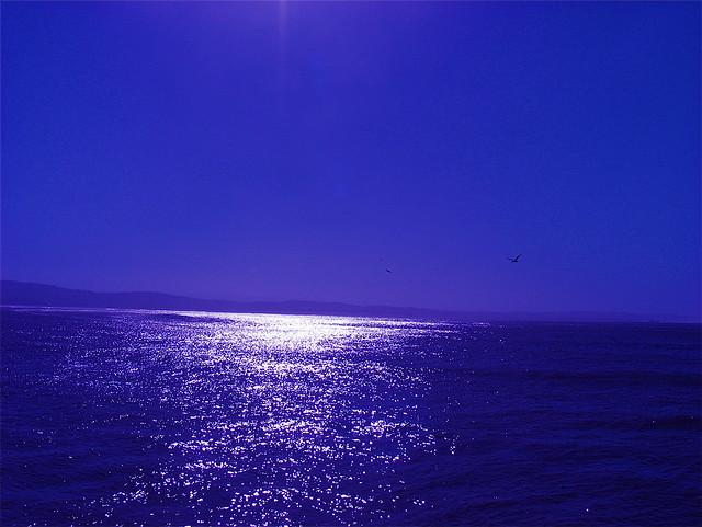 BLEU OCEAN....ESSAOUIRA....EXPLORE MAI 2008**
